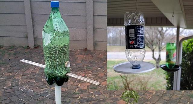Cinco formas curiosas para reciclar garrafas de pl stico for Como criar cachamas en tanques plasticos
